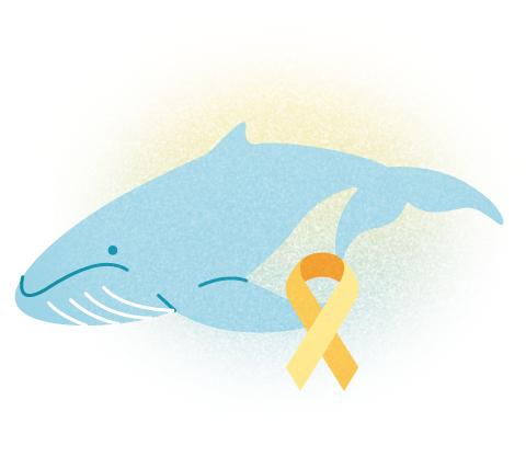Baleia azul servico de prevencao ao suicidio jogo