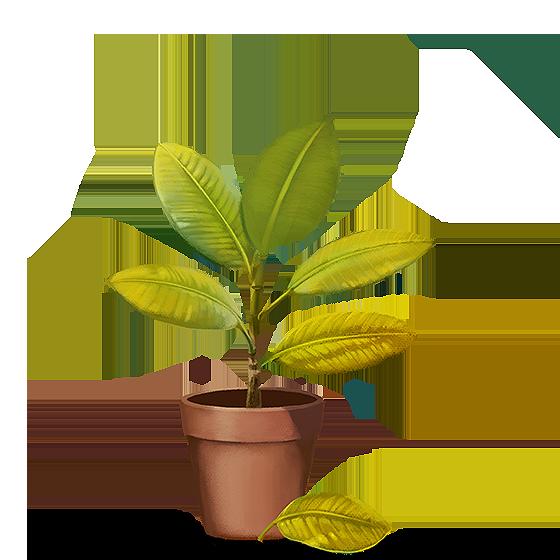 Ilustração: Planta com folhas amareladas