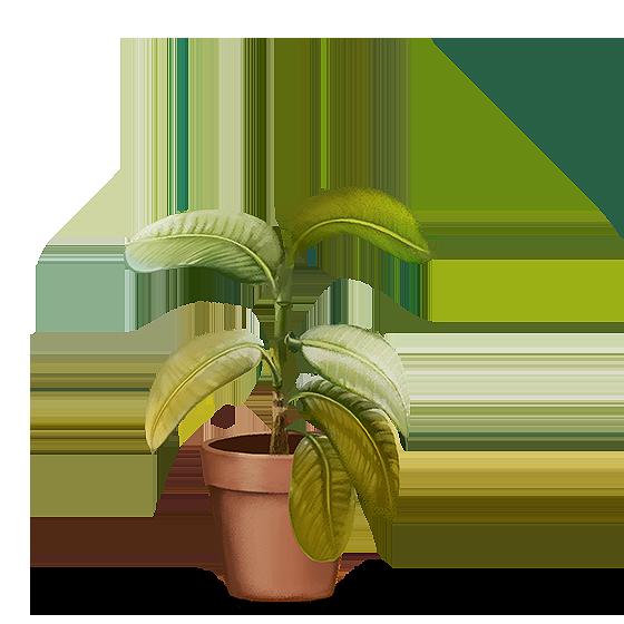 Ilustração: Planta com folhas murchas e pálidas
