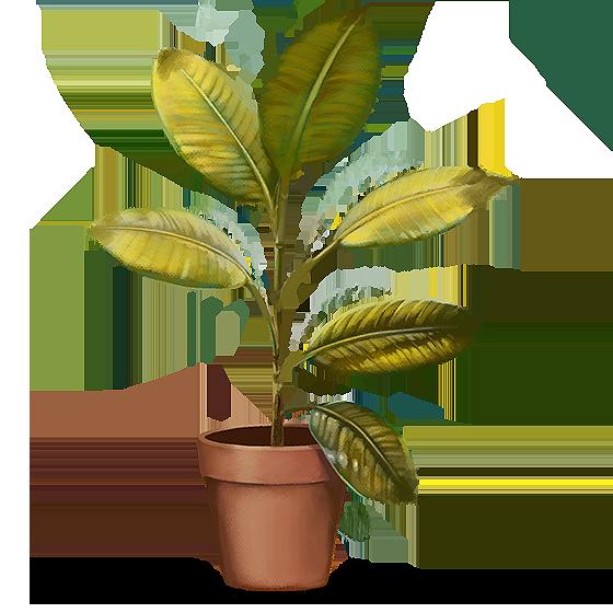 Ilustração: Planta com pontas secas nas folhas