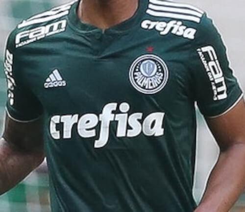 foto da camisa do palmeiras no brasileirão em 2018