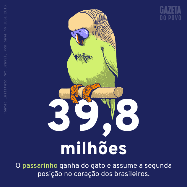 População de aves de estimação do Brasil
