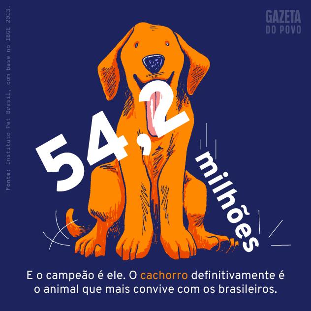 População de cachorros de estimação do Brasil