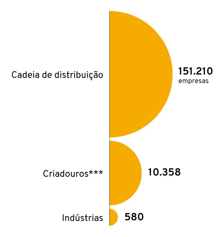 Infográfico: Empresas do setor pet no Brasil