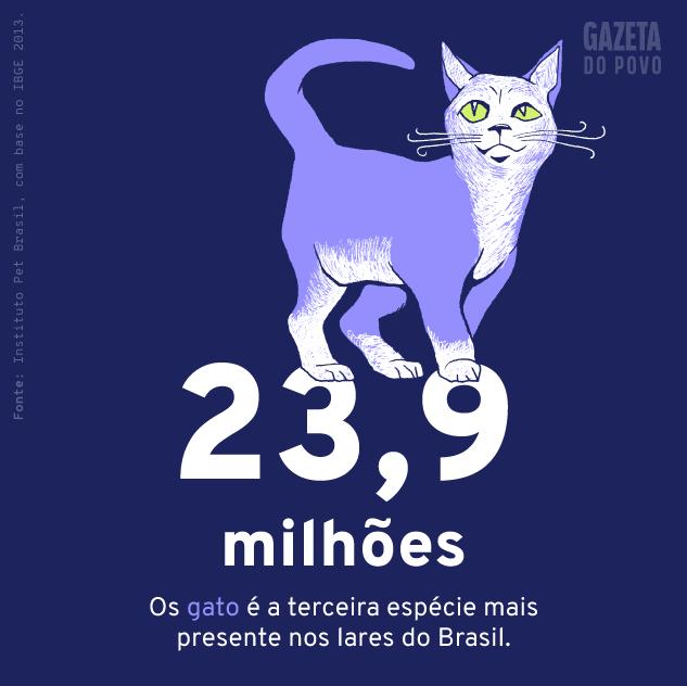 População de gatos de estimação do Brasil