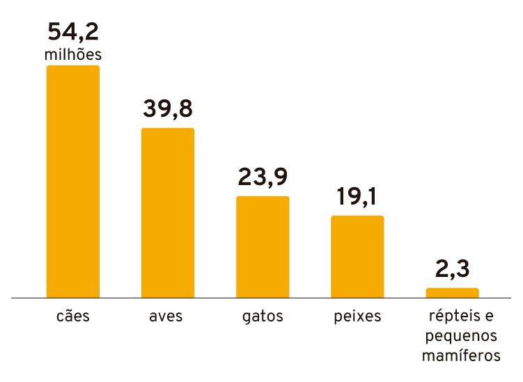 Infográfico: População de animais no Brasil