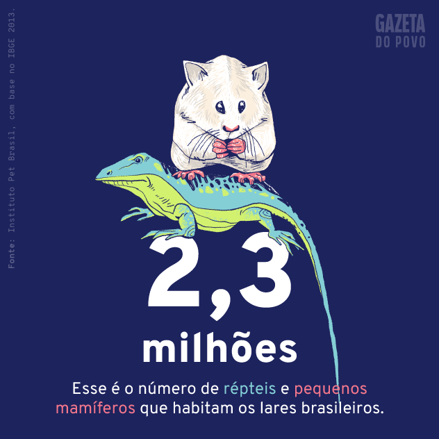 População de répteis e pequenos mamíferos de estimação do Brasil