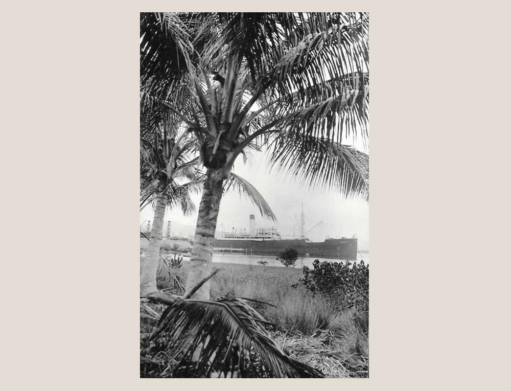 """""""Palmeiras à beira mar."""" E um dos navios vistos e visitados pelos viajantes. (Foto: Arthur Wischral/coleção Key Imaguire.)"""